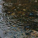 【沖縄の湿気】梅雨時期の湿気がすごい除湿機ガンガン作動中