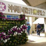 冬の沖縄おすすめスポット【熱帯ドリームセンター】沖縄国際洋蘭博覧会も開催