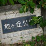 【旭ヶ丘公園】波の上ビーチ・波上宮近くにある公園でお散歩|那覇市