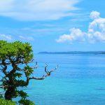 1年間住んでみたら、沖縄ってこんなとこだった。|沖縄移住体験