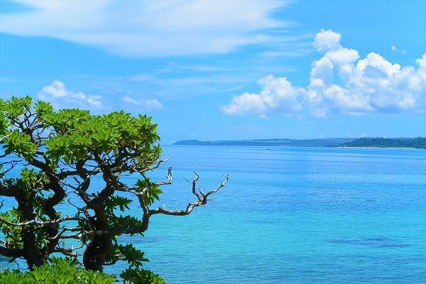 1年間住んでみたら、沖縄ってこんなとこだった。 沖縄移住体験