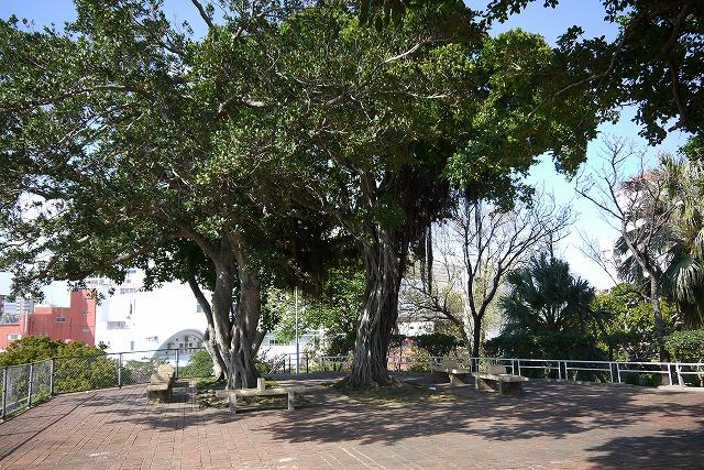 街中の憩いの場【希望ヶ丘公園】那覇市国際通り近く