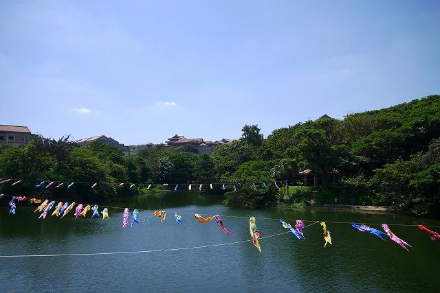 首里城周辺観光|龍潭池に泳ぐ鳥とこいのぼり